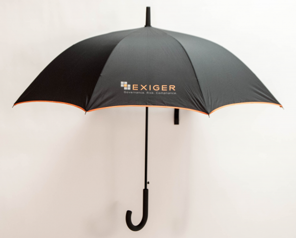 "48"" Fashion Umbrella"